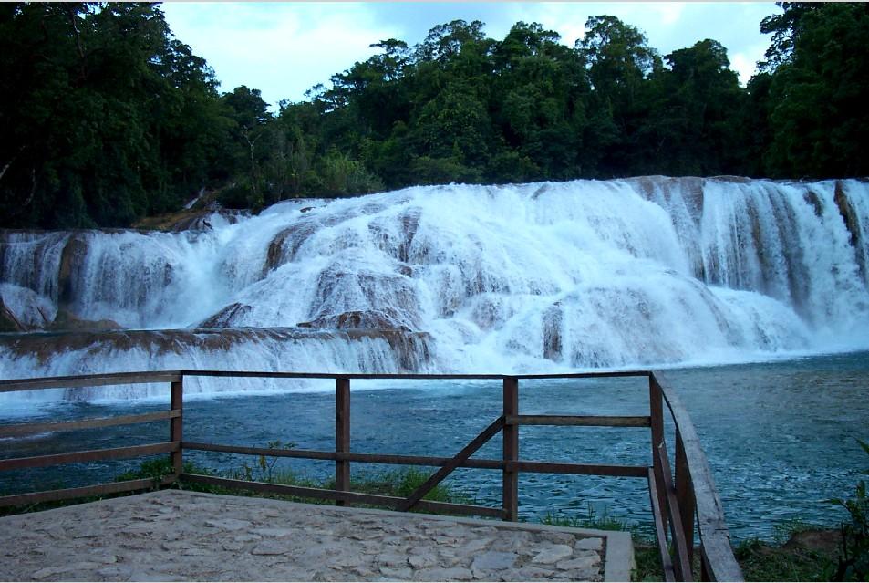 Chiapas agua azul nuevos hechos y denuncias blog sipaz for Cascadas de agua