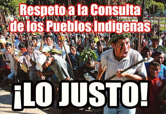 el derecho de los pueblos indigenas: