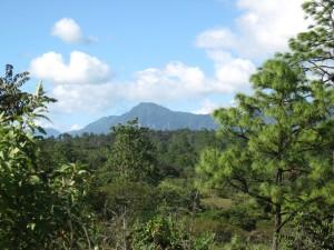 Región Las Cañadas, zona correspondiente al Caracol III de La Garrucha @ SIPAZ