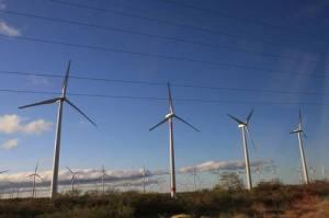 Parque eólico en el Istmo de Tehuantepec @ La Jornada