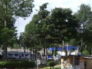 Penal nº5 de San Cristóbal de Las Casas @ Chiapas Denuncia Pública