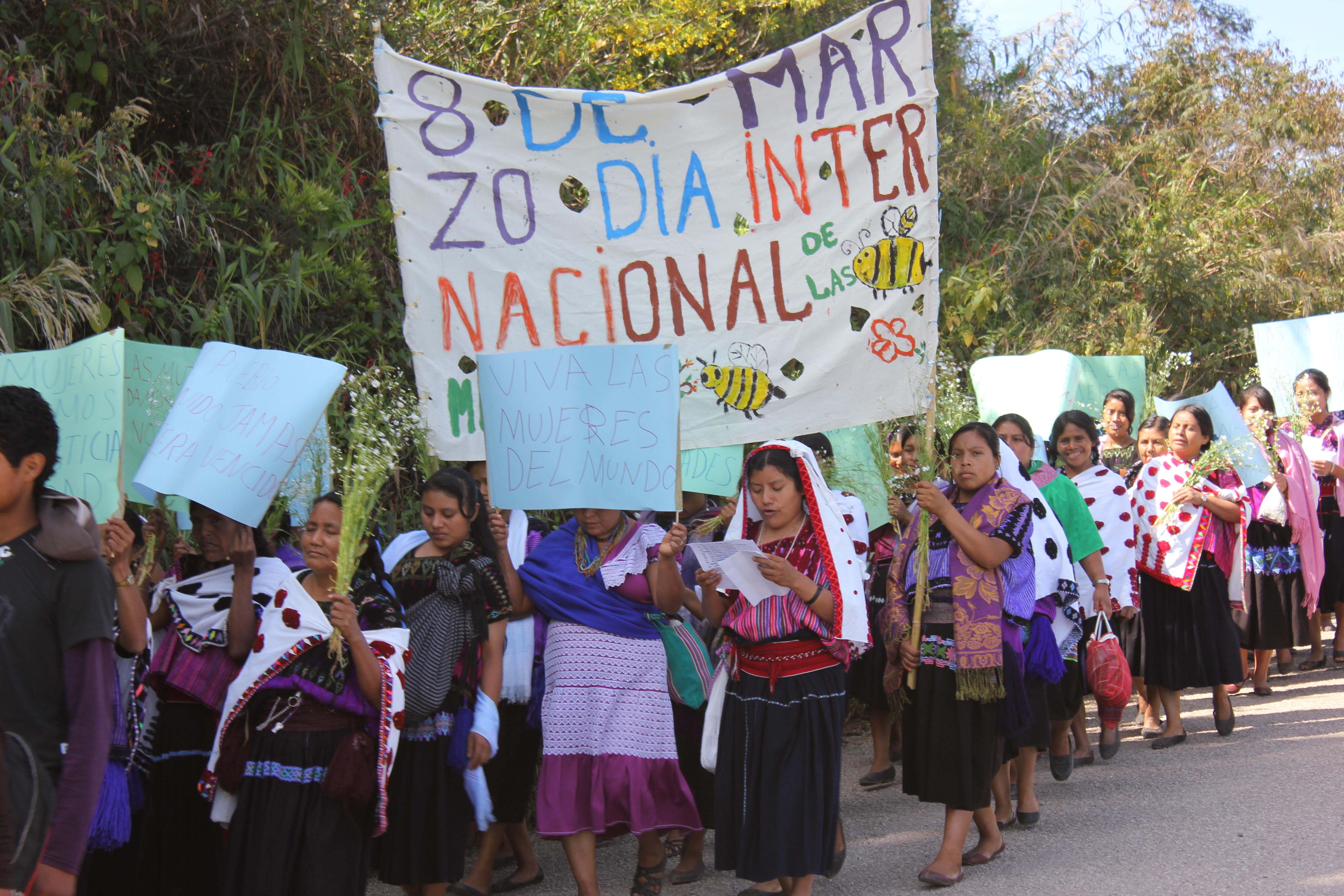 Chiapas: Marcha de las mujeres de las Abejas de Acteal por ...