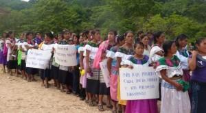 Mujeres en defensa de la tierra Foto @vivabachajon.wordpress.com